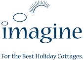 imagine-ireland-logo